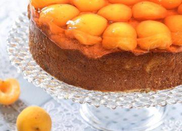 עוגת טורט משמשים וג'לי